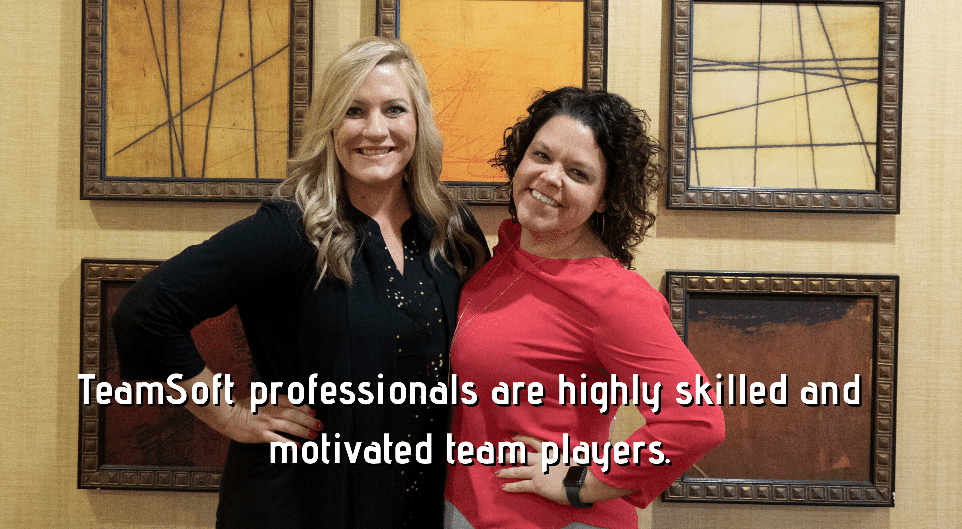 TeamSoft professionals are highly skilled and motivated team players. 2019